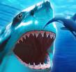 鲨鱼模拟中文破解版